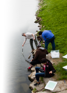 Citizen scientists taking water quality data.
