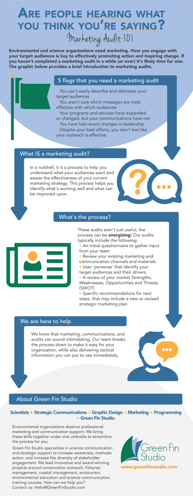 An infographic on how to conduct a marketing audit.