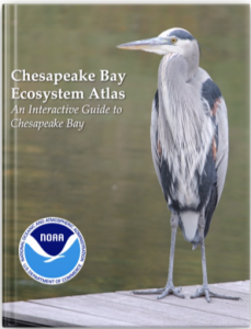 Cover image for the Chesapeake Bay Ecosystem Atlas: An Interactive Guide to Chesapeake Bay. Includes NOAA logo and a great blue heron standing on a dock.