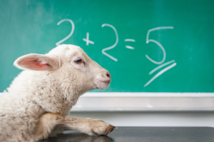 """a lamb in front of a chalkboard with """"2+2=5"""""""